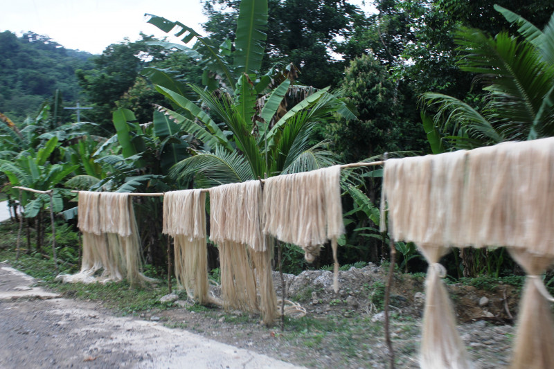 What is banana fibre and how do you make textiles from it?