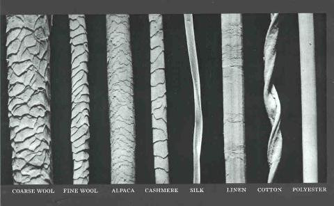 Comparing Fibres Under A Microscope