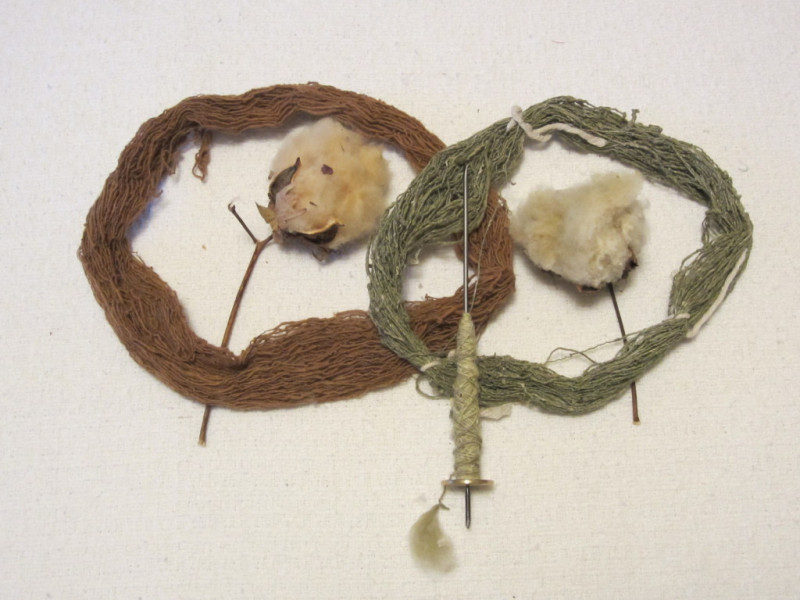green-brown-cotton-bolls-spindle-1024x768
